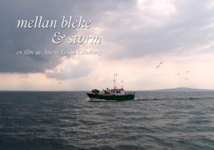 Bleke-o-Storm-550-hemsida